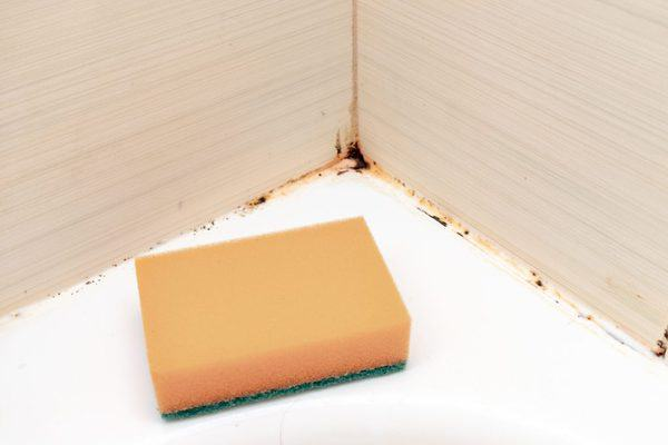 remove mold and mildew from shower caulking