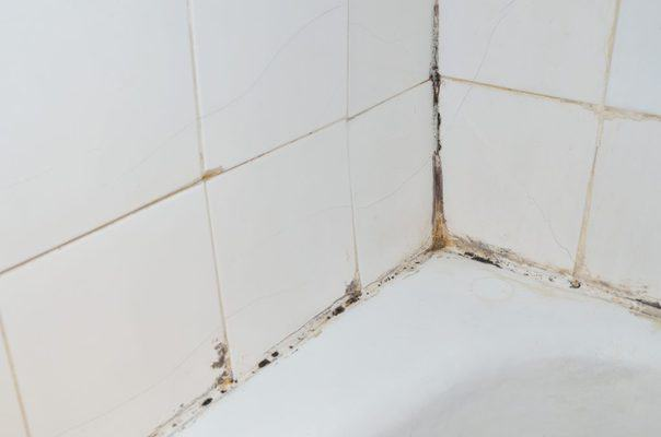 how to remove mold from shower caulking